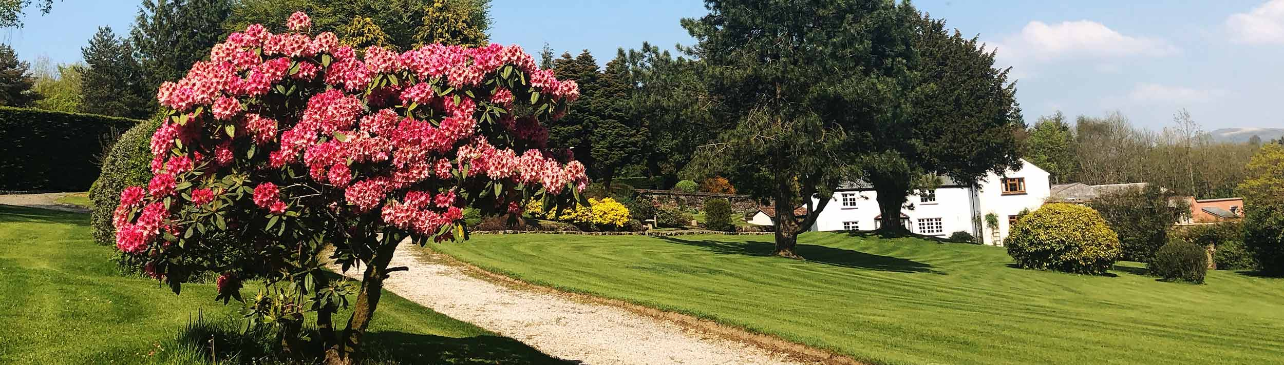 St. Luke's Hospice Open Gardens at Alder